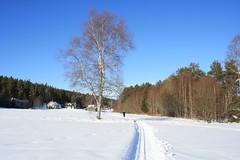 Vinterferie i Høland -09 049