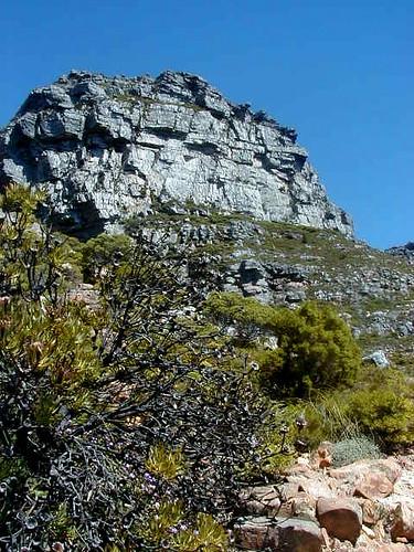 jagged peak