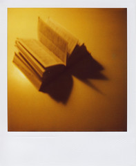 Scripta volant (focuspocus) Tags: film polaroid book 600 instant dictionary wrterbuch