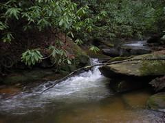 10 - Shoals On Mill Creek 2