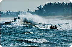We Believe... (Yug_and_her) Tags: life trees people india men beach water silhouette swim dangerous nikon waves coconut candid spray float incredible particles crashingwaves vizag risky d90
