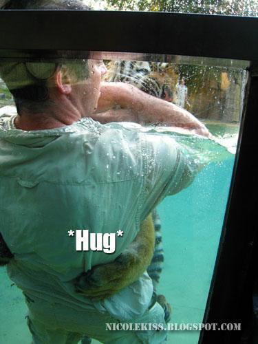 human tiger hug