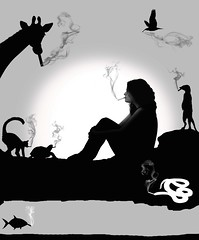 Parody (Olga Sotiriadou) Tags: fish selfportrait bird animals silhouette photomanipulation photoshop fun meerkat funny turtle snake cigarette smoke explore sp lemur parody giraffe imagemanipulation justforlaughs explored mrsardonicus