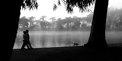 who could ask for more? (silkway) Tags: california blackandwhite bw dog lake tree bird water fog spring couple walk relection panarama broadview top20blackandwhite bwdreams catsanddogsofgwsf
