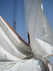 DSCN1555 (evabouman) Tags: de op avanti varen