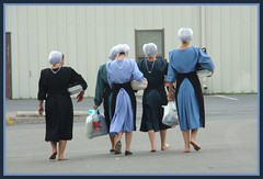 Amish Women (Photographic Poetry) Tags: horse field rural farm country farming amish intercourse hay lancastercounty pennslyvaniadutch