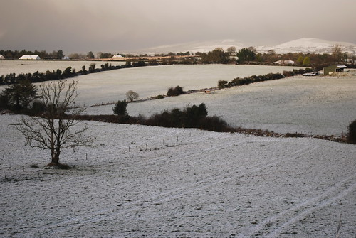somewhere in Co. Tipperary, 18 Jan 2009