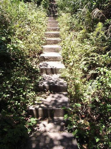 蓄水池過後的水泥階梯