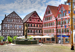 Leonberg (Habub3) Tags: city travel houses holiday fountain beautiful architecture buildings germany deutschland photo interestingness interesting nikon europa downtown place map urlaub brunnen may historic explore mai stadt architektur altstadt oldtown 2009 hdr leonberg marktplatz vacance maypole fachwerk d300 maibaum fachwerkhuser markedplace halftimbredhouses habub3
