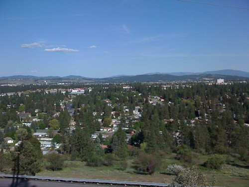 View from Cedar