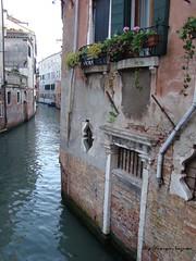 Venice 03 (pouryanazemi) Tags: italy italia dragonfly loveit oldcity doubledragon beautifulshot travelworld anticando flickerlovers floweredwindowsbalconies