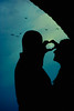 Love Birds (JGo9) Tags: love birds engagement nikon heart d60