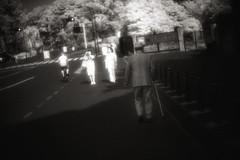 la verticale de l't :II (TommyOshima) Tags: leica blackandwhite film monochrome ir voigtlander f45 infrared rodinal 15mm 125 m7 superwideheliarii laverticaledelt