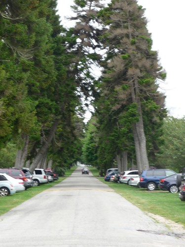 Looking down the Driveway towards the Gate House