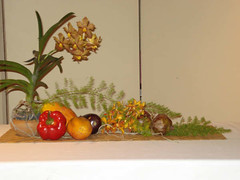 Arrangement_by_Mrs._L.C._Monteith_at_Sunday's_Demonstration