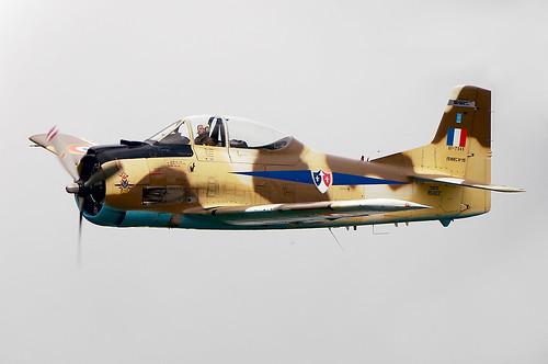 Warbird picture - T-28 Trojan/Fennec