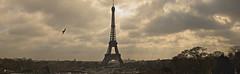 Eiffel Tower Pano