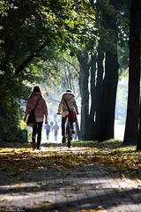 ... (anka.anka28) Tags: autumn people tree bike poland polska explore rower ludzie jesień gdynia orłowo drzewo pomorze explored 450d canon450d platinumheartaward