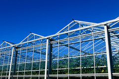 Commercial Solar Greenhouses