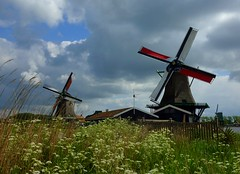 Windmills at Zaanse schans (Frans.Sellies) Tags: holland windmill nederland thenetherlands windmills mills paysbas olanda zaanseschans hulanda niederlande  hollandia   holandia hollanda pasesbajos pasesbaixos   alankomaat    nizozemsko  nyderlandai      p1300651 nderlande