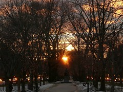 Sunset over Commonwealth Ave