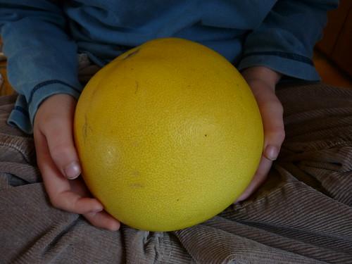 boy holding pomelo