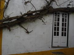 portugal-27feb09 110 (wardell2073) Tags: bidos portugal27feb09