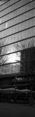 Cologne Vertical 2 (betablogga) Tags: bw white black deutschland cologne köln schwarz weis vertikal verticalgermany