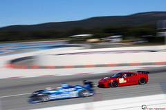 Takedown (Vikars') Tags: blue red test car digital race canon paul eos rebel la dc high track tech sigma ferrari os days exotic mans le series panning corvette haram 18200 2009 v8 gp gt2 ricard f430 lmp1 takedown lms httt halal vikars castellet gt1 lmp2 fouine xti lemansprototype 400d lemansseries teammodena v8powered blueporsche