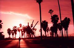 (willgoodan) Tags: venice sunset beach silhouette 35mm xpro purple pentax violet lavender velvia gradient 100 kx