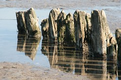 wad / shoal / banc de sable 2 (Photos Marlies) Tags: waddenzee reflexions shoal goldenglobe denoever aplusphoto overtheexcellence 100commentgroup thecelebrationoflife