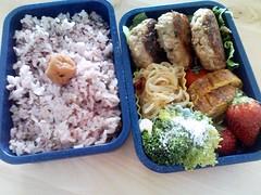 Pour 'le danna'... (skamegu) Tags: food japan japanese strawberry rice broccoli hamburger bento beansprouts tamagoyaki   umeboshi