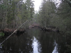 Mullica River (mts83) Tags: newjersey historic pinebarrens batsto