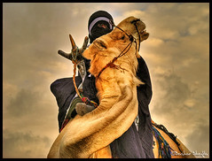 Touareg Culture ! (Bashar Shglila) Tags: sunset sky colors clouds desert time culture camel libya camels lybia touareg ghadames libia libyen   lbia libi libiya liviya ghadamis libija    tagelmust      lbija  lby libja lbya liiba livi  ibia