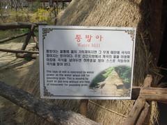 DSC01204 (Turansa Tours) Tags: yongin aldea folclorica