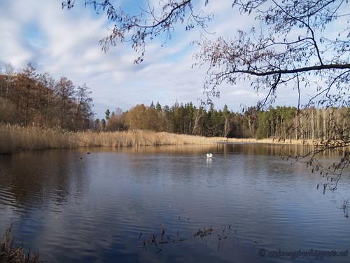 Stockholm Natur