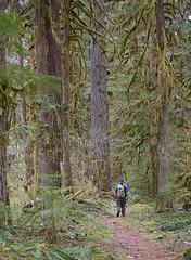 Old Sauk hiker1