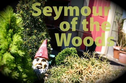 Feed me Seymour, feeeeeeeeeeeeed me