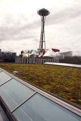 View of the Space Needle and the EMP from the green roof (kuow949) Tags: features greenroof