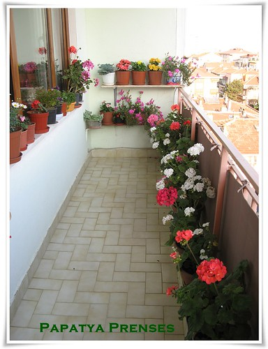 balkonumuz