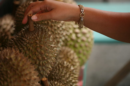 selecting the durian