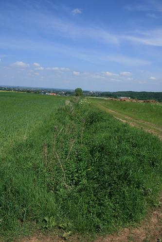 Grabensystem Kreuzweingarten