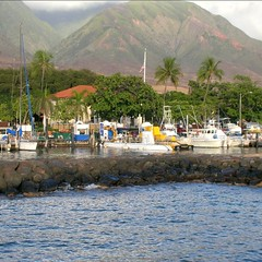 Boats docked in Lahaina Harbor as seen outside the sea wall.