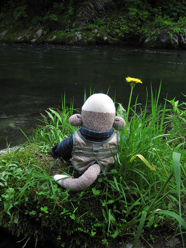 furano nishi-tappu river
