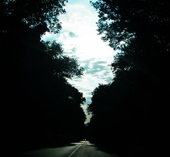 divine light - (2011) ((rino)) Tags: road blue trees light sky italy car alberi clouds dark grey photo flickr strada italia nuvole grigio foto blu surreal magritte headlights divine cielo sunrays divina macchina luce marino sunray rino scuro fari 2011 surreale renmagritte divinelight raggiodisole raggidisole