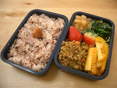 Squid again, doh! (skamegu) Tags: apple miso strawberry rice curry squid bento spinach lentils    umeboshi       stewedapples