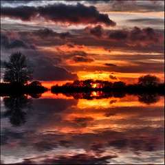 Sunset Reflections (algo) Tags: trees sunset sun clouds photography interestingness topf50 topv333 bravo searchthebest topv1111 topv999 explore algo topf100 100f 50f explore6 abigfave topv660