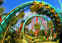 Loopdie Loop (Universal Stopping Point) Tags: tampa colorful bright upsidedown florida extreme loops rollercoaster buschgardens kumba exxxtreme shotthroughanetmeshataweirdangle itprovedquitedifficulttoframeandtime daniellewhatwasthisridecalledagain exposurecontrastandvibrance