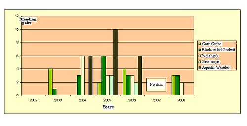 Šlapių žemių sausinimas (tūkst. ha) Nemuno žemupyje XX a.