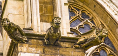 York Minster 16 (andrew_brooks86) Tags: york old tower church cathedral spire gargoyle shambles minster